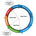 joomla-dev_cycle